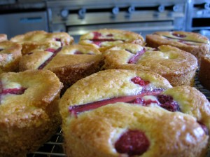rhubarb and raspberry buckle
